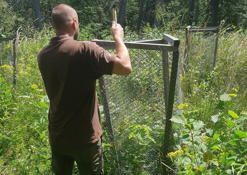 Pracovník pre pestovanie a ochranu lesa